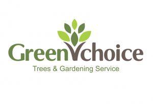 green vchoice